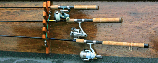 rods and reels - freshwater sportfishing, Fishing Rod