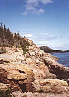 Shore Scene in Acadia National Park