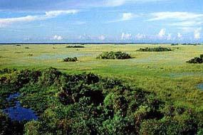 Everglades Nat'l Park as shown on the NPS website.