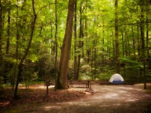 Tips For Keeping Your Campsite Clean